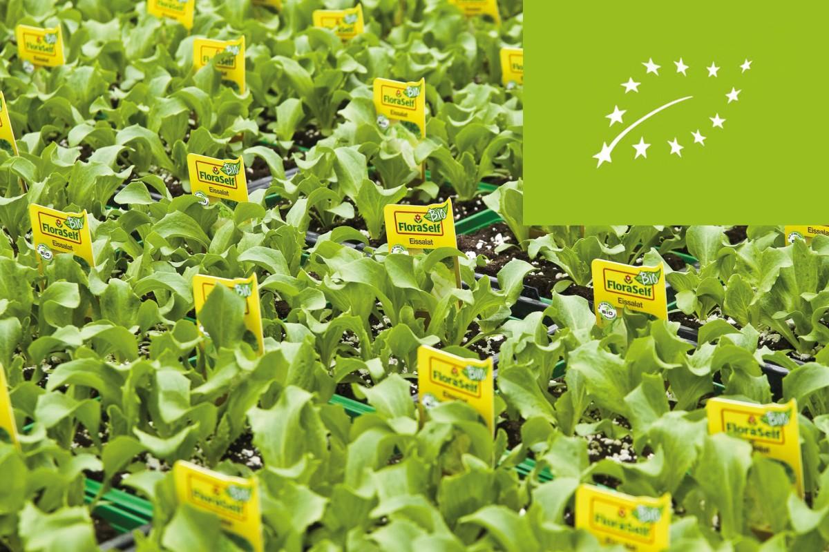 FloraSelf Bio Pflanzen
