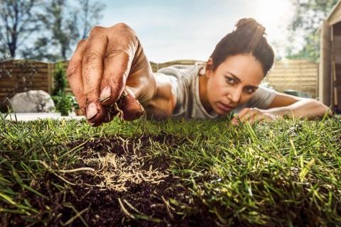 Rasen und Saatgut jetzt bei HORNBACH Österreich online kaufen!