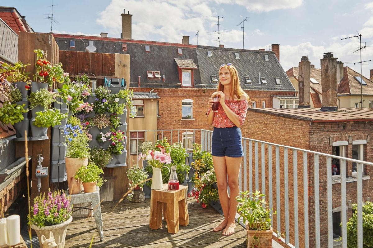 gartenaktuell balkon bepflanzen nature up