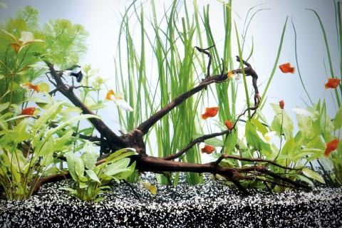 Aquarium-Unterschrank im HORNBACH Onlineshop