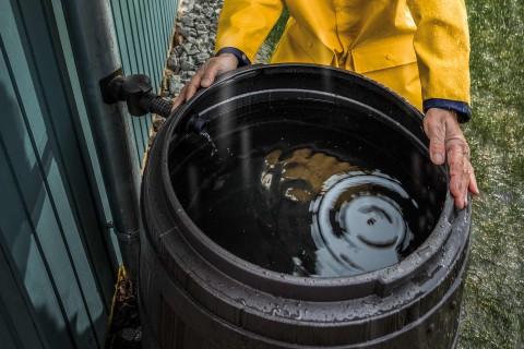 Regentonnen & Regenwassertonnen im HORNBACH Onlineshop