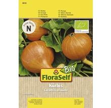 Gemüsesamen FloraSelf Bio Kürbis