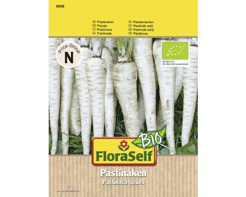 Gemüsesamen FloraSelf Bio Pastinaken