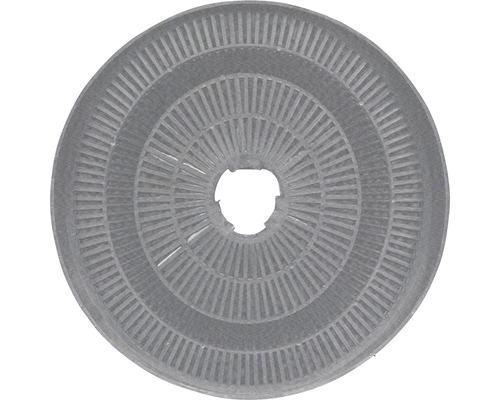 Kohlefilter CF110