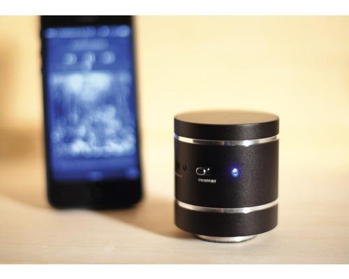 Resonanzlautsprecher Weka schwarz mit Bluetooth