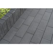Rechteckpflaster New York basalt mit Glimmer 40x20x8cm