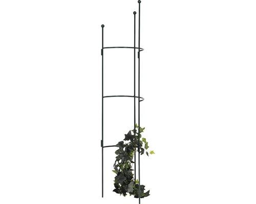 Halbrundspalier Cosmea S 120x26,5x14 cm oxford-grün