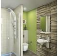 Handwaschbecken Jungborn Evina 55x40 cm weiß mit integrierten Handtuchhaltern