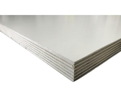 Multiplexplatte Birke weiß 1250x2500x18 mm (Zuschnitt online reservierbar)