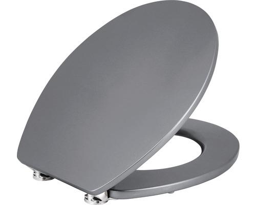 WC-Sitz Form & Style Metallic silver mit Absenkautomatik