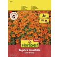 Blumensamen FloraSelf Studentenblume/Tagetes kleinblütig 'Luna Orange'