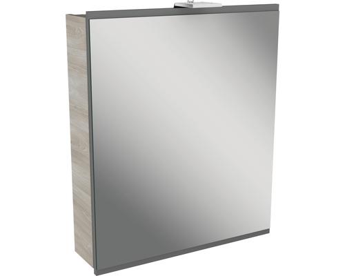 Spiegelschrank Fackelmann Lima 60x73 cm 1-türig Steinesche grau