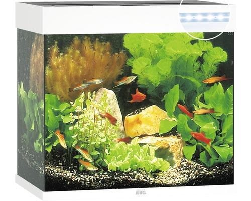 Aquarium JUWEL Lido 120 mit LED-Beleuchtung, Pumpe, Filter, Heizer ohne Unterschrank weiß