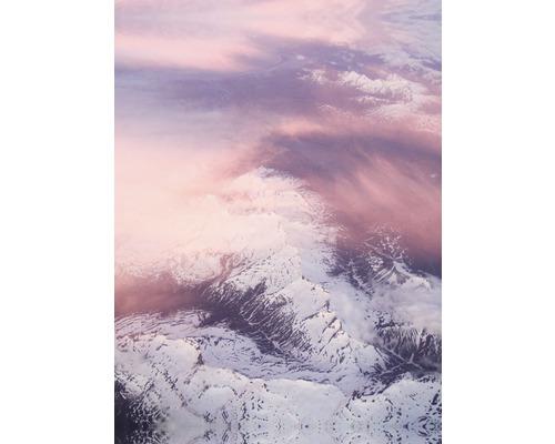 Leinwandbild Soft Blush 50x70 cm
