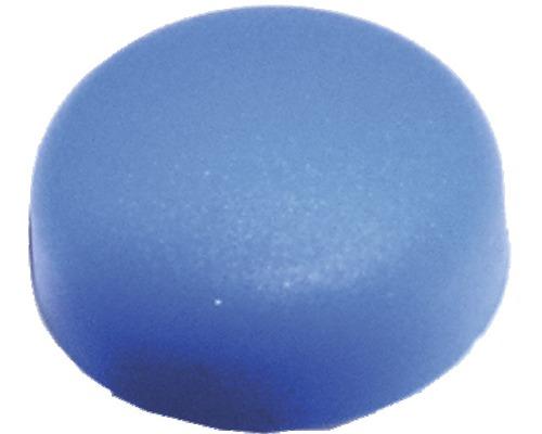 Abdeckkappe f.Nummernschild blau, 100 Stück
