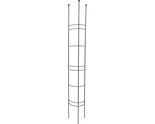 Halbrundspalier L 30x27x180 cm lavagrau