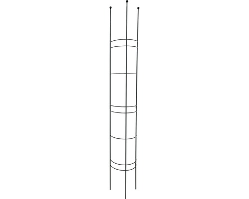Halbrundspalier L 30x27x180 cm montana-grün