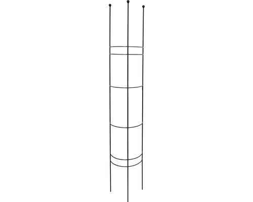 Halbrundspalier M 30x27x150 cm montana-grün