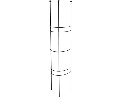 Halbrundspalier S 30x27x120 cm lavagrau