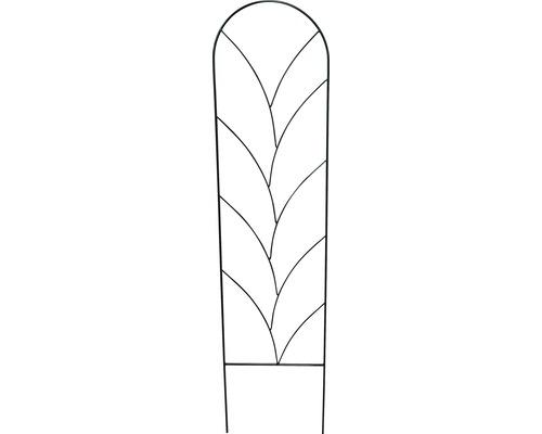 Zierspalier Ranke M 36x150 cm montana-grün