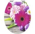 WC-Sitz Schütte Flowers mit Absenkautomatik