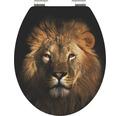 WC-Sitz Schütte Lion mit Absenkautomatik