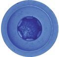 Blechschraube f.Nummernschild, 4,8 x 16 mm, Edelstahl blau, 100 Stück