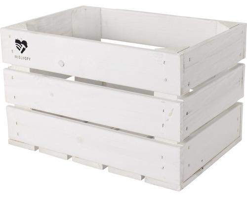 Buildify Kiste weiß 34x23x21 cm