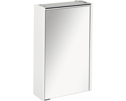 Spiegelschrank Fackelmann Denver Hype 3.0 42x68,5 cm 1-türig weiß