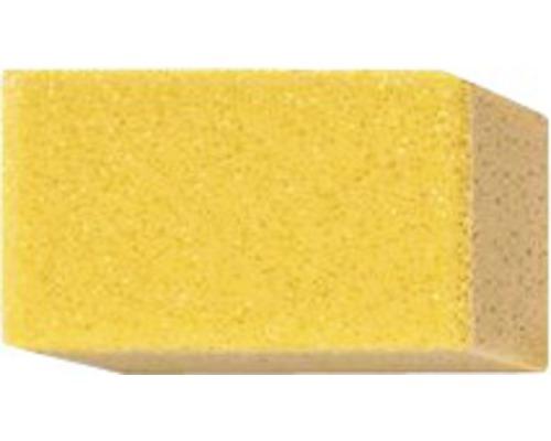 Kombischwamm 15x9 cm