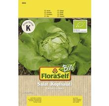 Salatsamen FloraSelf Bio Häuptelsalat