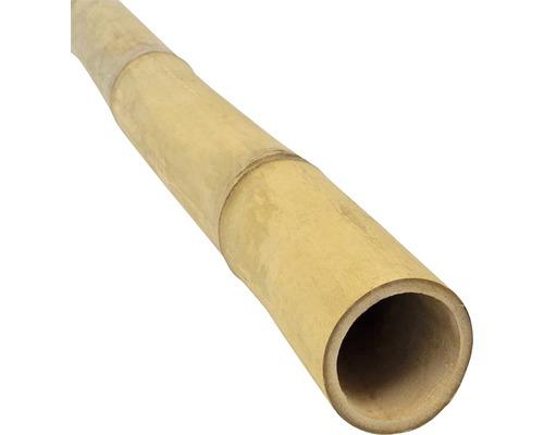 Bambusrohr Ø 4-5 cm Länge 200 cm