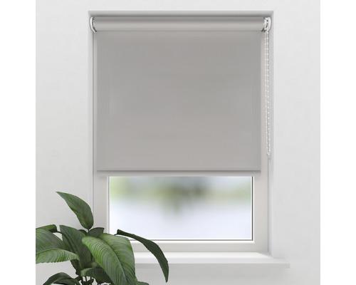 Soluna Tageslichtrollo S2, Screen silber, 60x190 cm