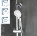 Duschsäule Schütte Aquastar 60500 mit Umsteller chrom/weiß