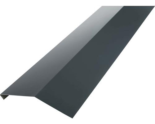 Precit Schürze für Dachrinne anthracite grey RAL7016 2 m