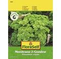 Gemüsesamen FloraSelf Petersilie gekräuselt 'Grandeur/Mooskrause 2'