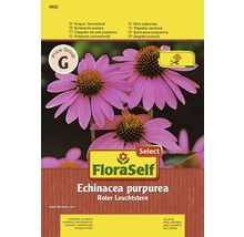 Blumensamen FloraSelf Select Roter Sonnenhut/Echinacea 'Roter Leuchtstern'