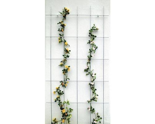 Spalier 5-strebig 75 x 150 cm, grau