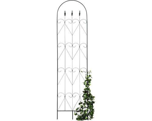 Zierspalier Zora 50x183cm