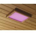 LED Farblichtanwendung Karibu Premium 320x240x38 mm inkl Fernbedienung