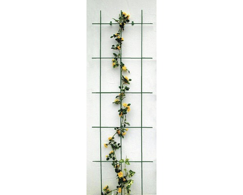 Gitterspalier 45 x 150 cm, grün