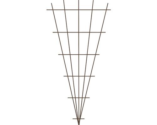 Fächerspalier 75 x 150 cm, braun