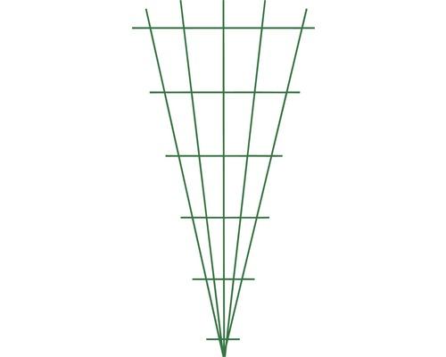 Fächerspalier 75 x 150 cm, grün