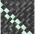 Unterbodengewebe FloraSelf 25 x 2 m 100 g/m², schwarz