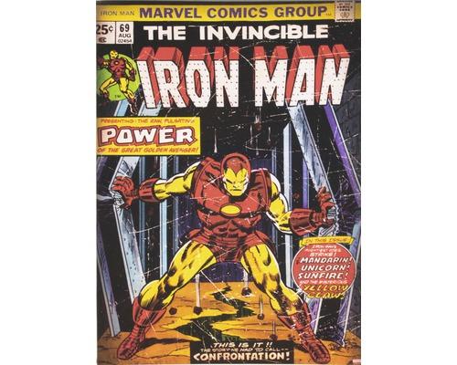 Leinwandbild Marvel Iron Man 50x70 cm