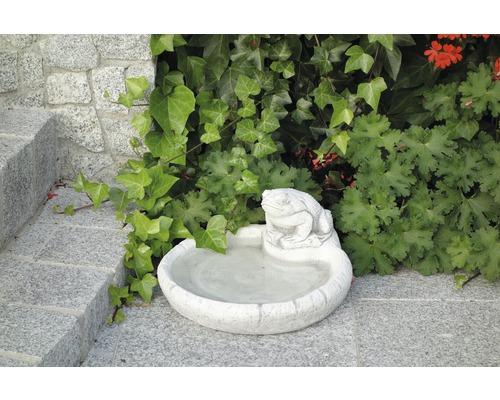 Gartendeko Tränke mit Frosch