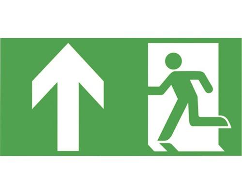 Notausgangsschild geradeaus Kunststoff Grün/Weiß 300 x 150 mm