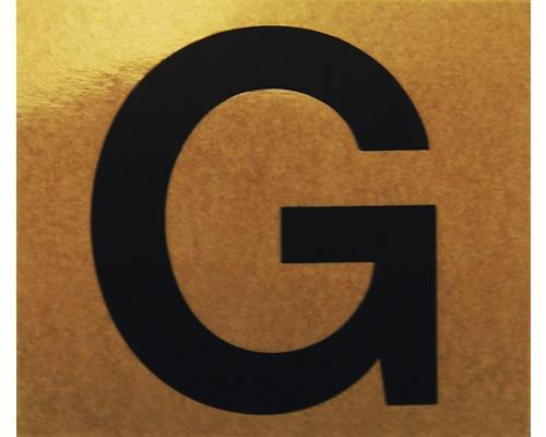 """Klebeziffer """"Buchstabe G"""" Papier 50 x 50 mm"""