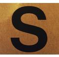 """Klebeziffer """"Buchstabe S"""" Papier 50 x 50 mm"""
