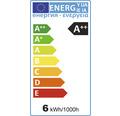 FLAIR LED Lampe A60 Filament klar E27/6W(60W) 810 lm 2700 K warmweiß